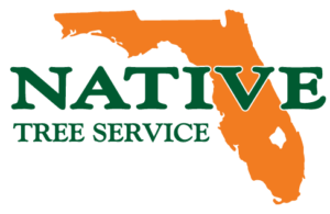 NATIVE-LOGO-Corrected-File